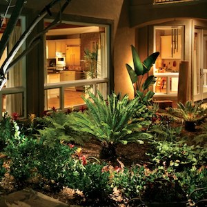 La Jolla Exterior landscape lighting