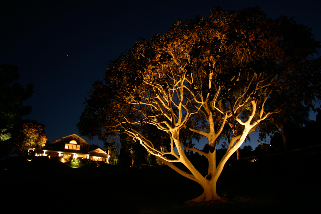 The Benefits of Landscape Lighting
